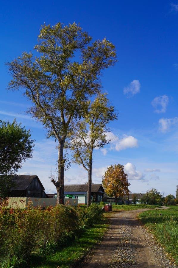 Ζωηρόχρωμο τοπίο φθινοπώρου στο χωριό με το μπλε ουρανό στοκ φωτογραφίες