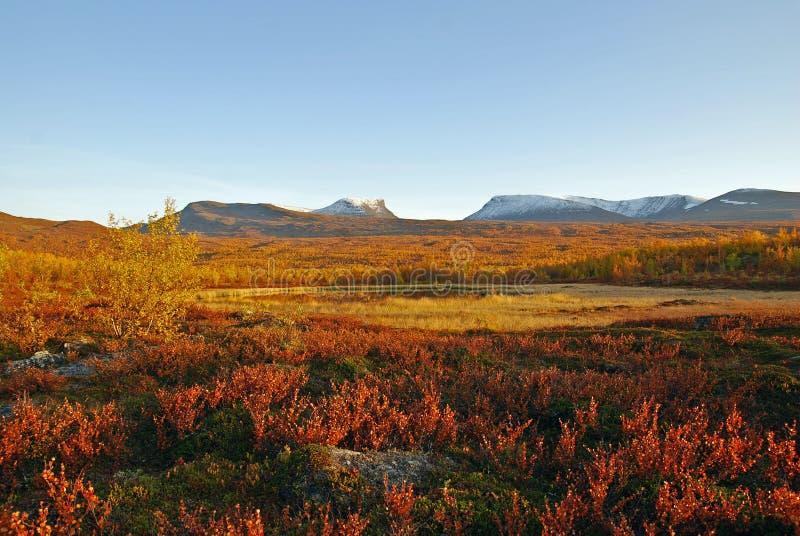 ζωηρόχρωμο τοπίο φθινοπώρ&omic στοκ εικόνα με δικαίωμα ελεύθερης χρήσης