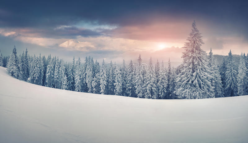 Ζωηρόχρωμο χειμερινό πανόραμα των χιονωδών βουνών στοκ φωτογραφία με δικαίωμα ελεύθερης χρήσης