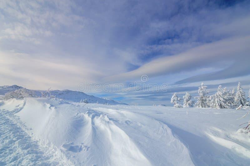 Ζωηρόχρωμο χειμερινό πρωί στα βουνά στην ανατολή στοκ εικόνα με δικαίωμα ελεύθερης χρήσης