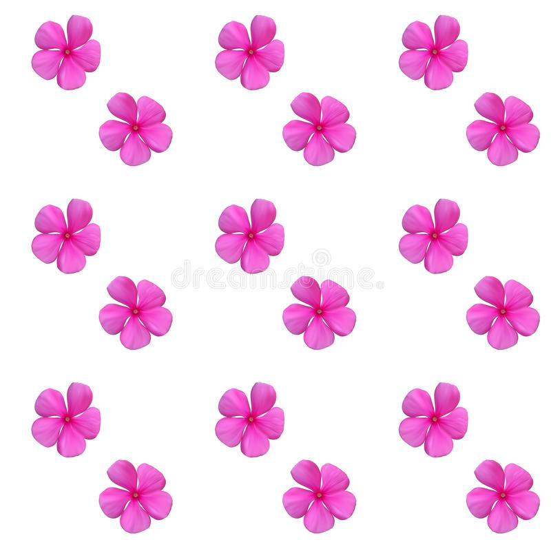 Ζωηρόχρωμο όμορφο φυσιοκρατικό ρόδινο λουλούδι πρότυπο άνευ ραφής Β απεικόνιση αποθεμάτων