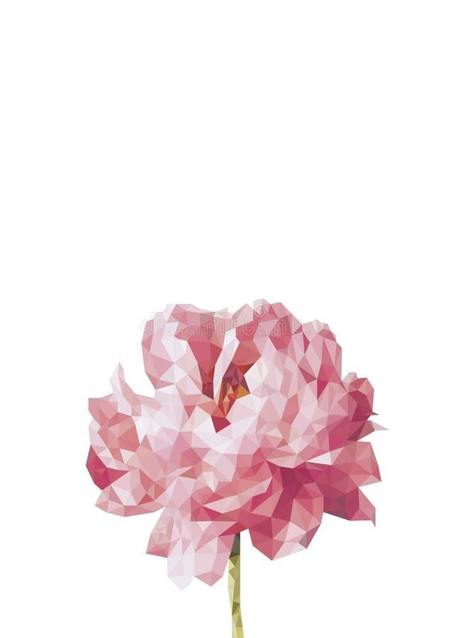 Ζωηρόχρωμο sihouette του peony λουλουδιού στο polygonal ύφος στο άσπρο υπόβαθρο ελεύθερη απεικόνιση δικαιώματος