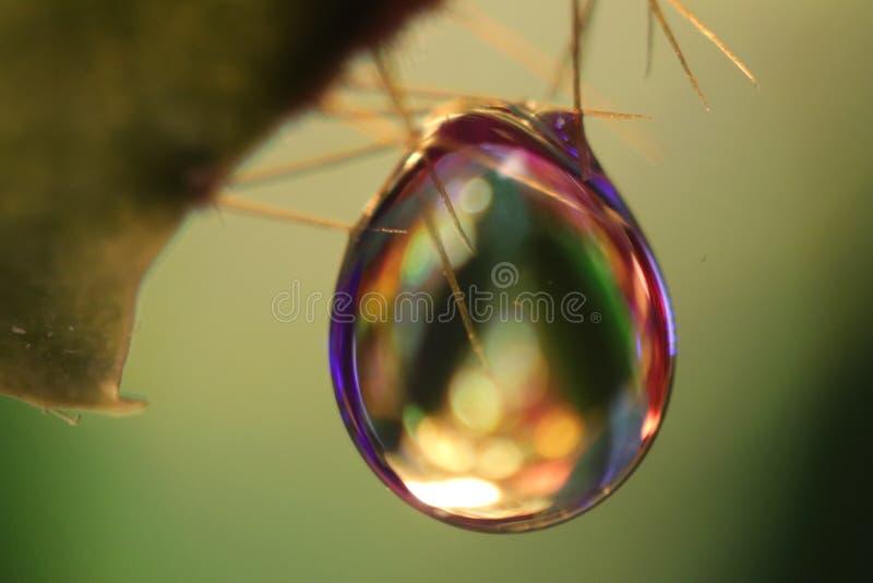 Ζωηρόχρωμο Waterdrop στοκ φωτογραφίες με δικαίωμα ελεύθερης χρήσης