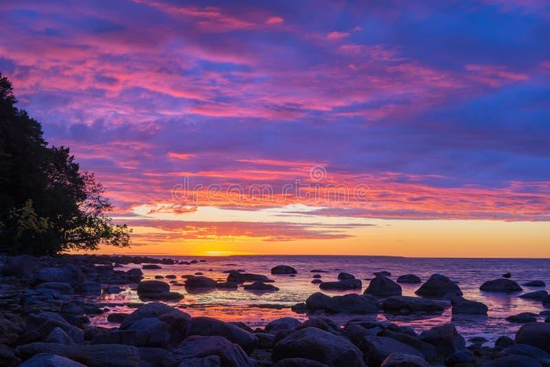 Ζωηρό ηλιοβασίλεμα πέρα από την πετρώδη ακτή της θάλασσας της Βαλτικής στοκ εικόνα