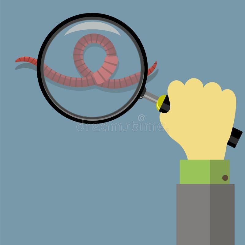 Ζωικά γήινα κόκκινα σκουλήκια για την αλιεία και το γυαλί στοκ φωτογραφίες