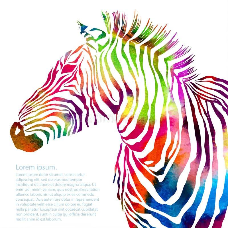 Ζωική απεικόνιση της ζέβους σκιαγραφίας watercolor διανυσματική απεικόνιση