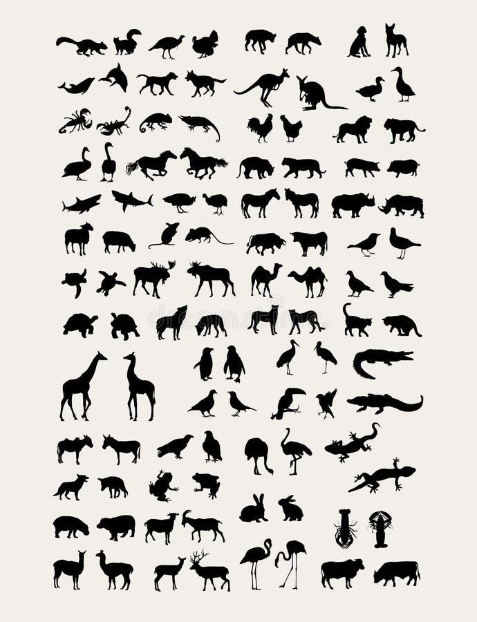 Ζωική συλλογή σκιαγραφιών ελεύθερη απεικόνιση δικαιώματος