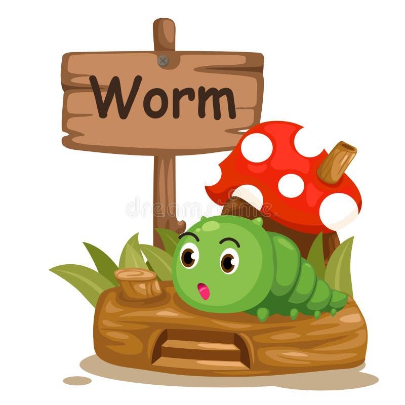 Ζωικό γράμμα W αλφάβητου για το σκουλήκι ελεύθερη απεικόνιση δικαιώματος