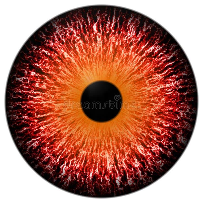 Ζωικό κόκκινο μάτι με το άσπρο υπόβαθρο, τρισδιάστατο κόκκινο στοκ εικόνα