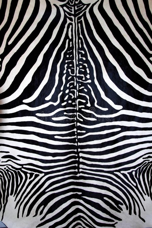 ζωικό μαύρο άσπρο με ραβδώσ& στοκ φωτογραφία με δικαίωμα ελεύθερης χρήσης