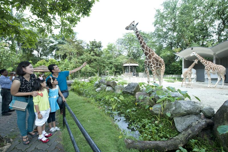 Ζωολογικός κήπος Negara Μαλαισία στοκ εικόνα με δικαίωμα ελεύθερης χρήσης