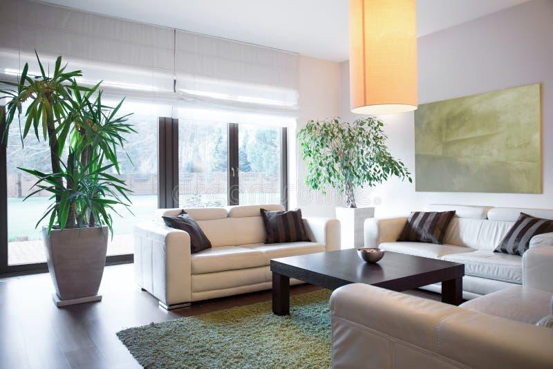 Ζωτικός χώρος μέσα στο σπίτι στοκ εικόνα με δικαίωμα ελεύθερης χρήσης