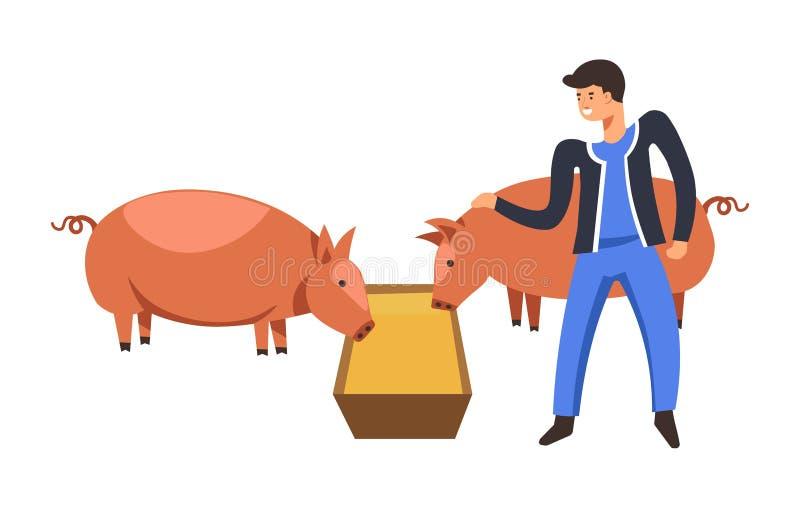 Ζώα αγροκτημάτων, αγρότης ατόμων που τείνουν για την κατανάλωση χοίρων ελεύθερη απεικόνιση δικαιώματος