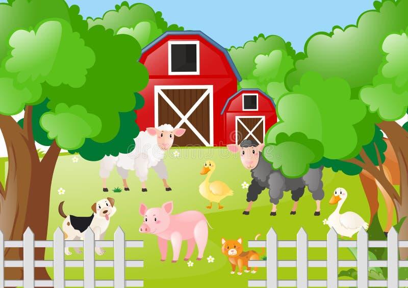 Ζώα αγροκτημάτων που ζουν η αυλή διανυσματική απεικόνιση