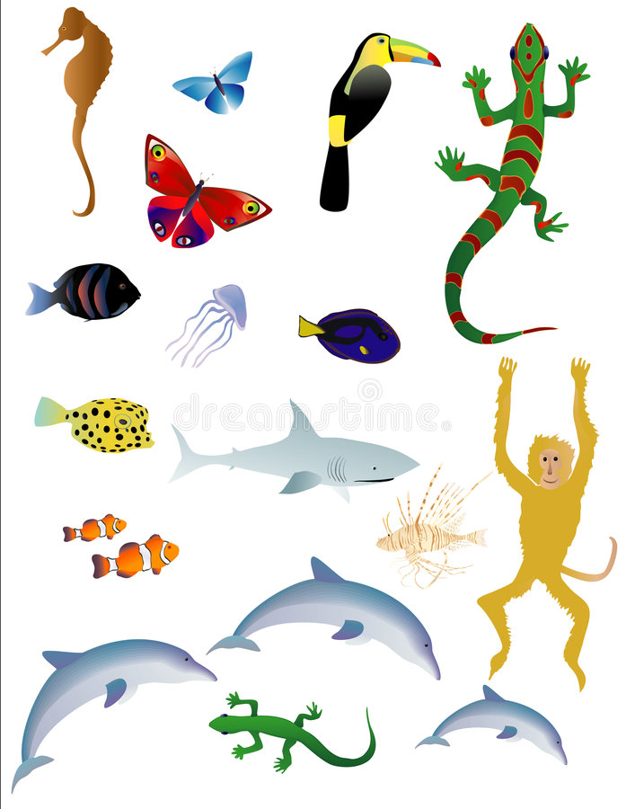 ζώα διάφορα διανυσματική απεικόνιση