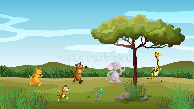 Ζώα που συναγωνίζονται στο λόφο διανυσματική απεικόνιση