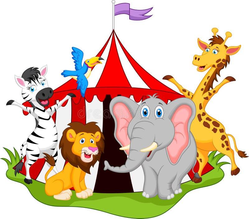 Ζώα στα κινούμενα σχέδια τσίρκων διανυσματική απεικόνιση