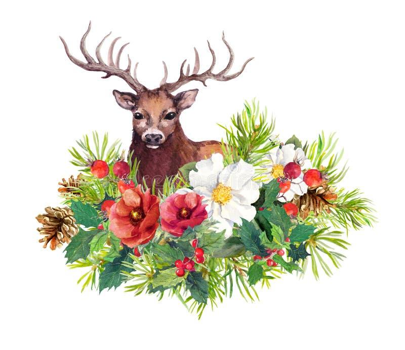 Ζώο ελαφιών, χειμερινά λουλούδια, δέντρο έλατου, γκι Watercolor για τη κάρτα Χριστουγέννων διανυσματική απεικόνιση