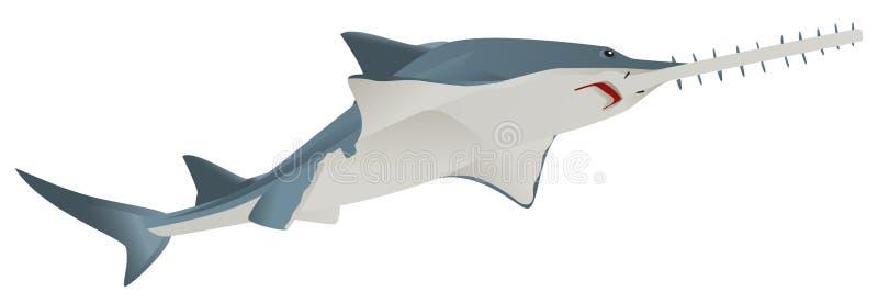 Ζώο θάλασσας πριονιών ψαριών απεικόνιση αποθεμάτων