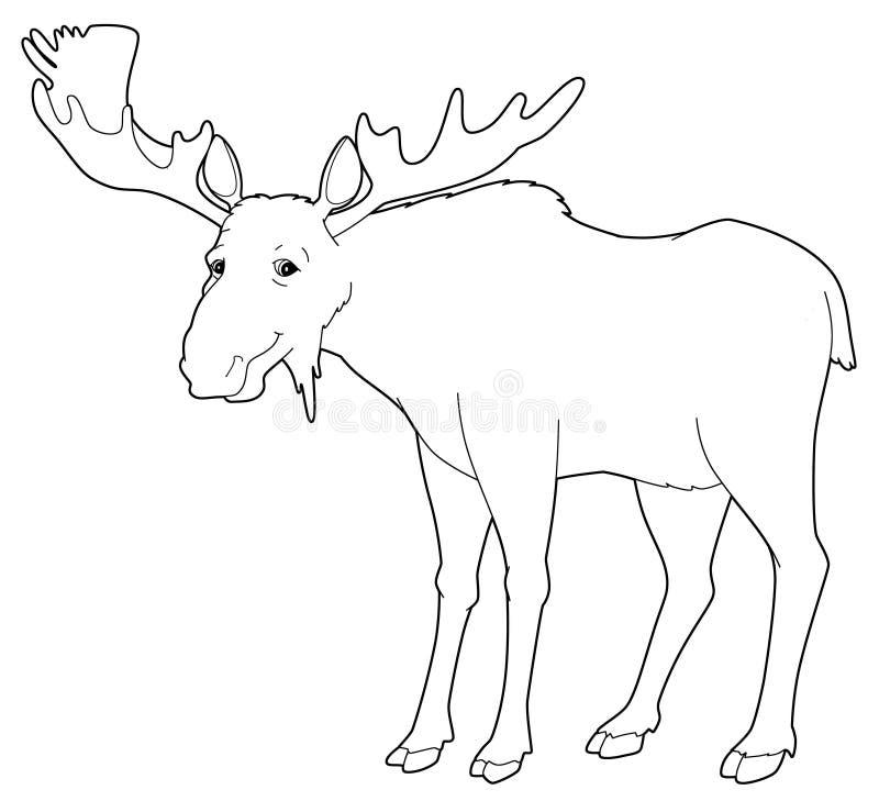 Ζώο κινούμενων σχεδίων - άλκες - που απομονώνονται - χρωματίζοντας σελίδα ελεύθερη απεικόνιση δικαιώματος