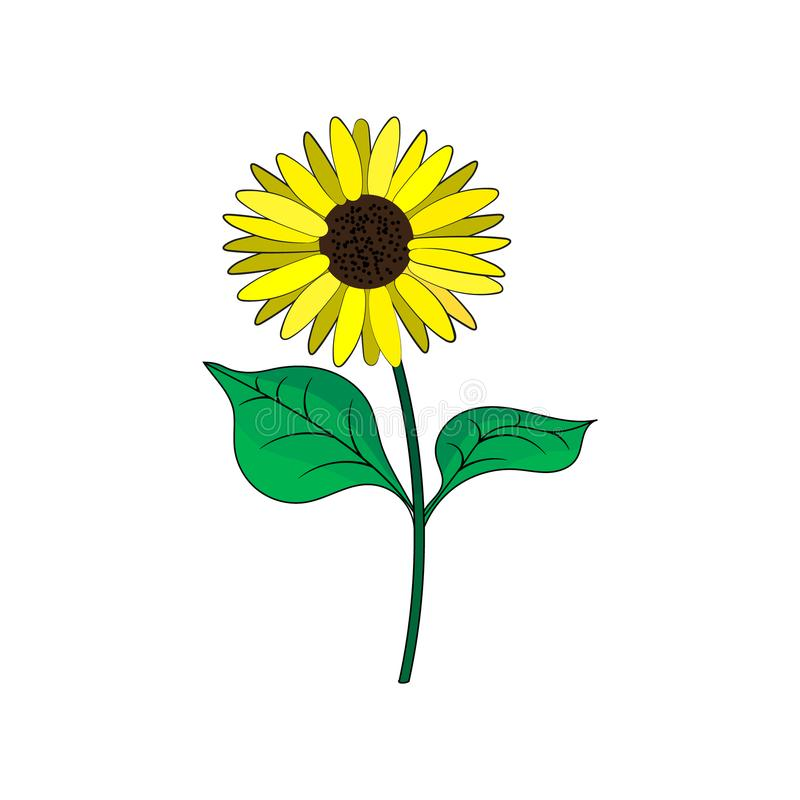 Ηλίανθος με τα πράσινα φύλλα στο επίπεδο ύφος ελεύθερη απεικόνιση δικαιώματος