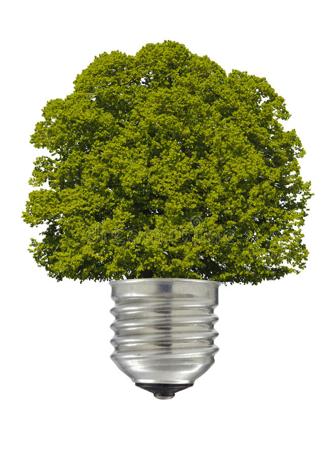 Download ηλεκτρικός λαμπτήρας στοκ εικόνες. εικόνα από οικολογικός - 22775236
