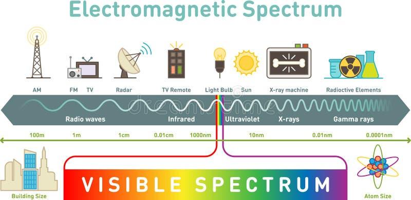 Ηλεκτρομαγνητικό infographic διάγραμμα φάσματος, διανυσματική απεικόνιση διανυσματική απεικόνιση