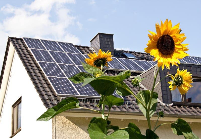 Ηλιακά κύτταρα σε μια στέγη με τα λουλούδια ήλιων στοκ εικόνα