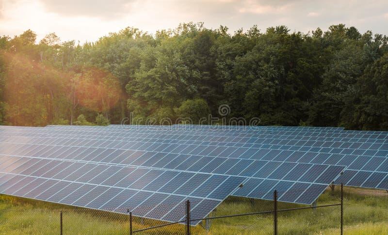 Ηλιακά πλαίσια στο αγρόκτημα που συλλέγουν την ηλεκτρική ενέργεια από τον ήλιο στοκ φωτογραφίες