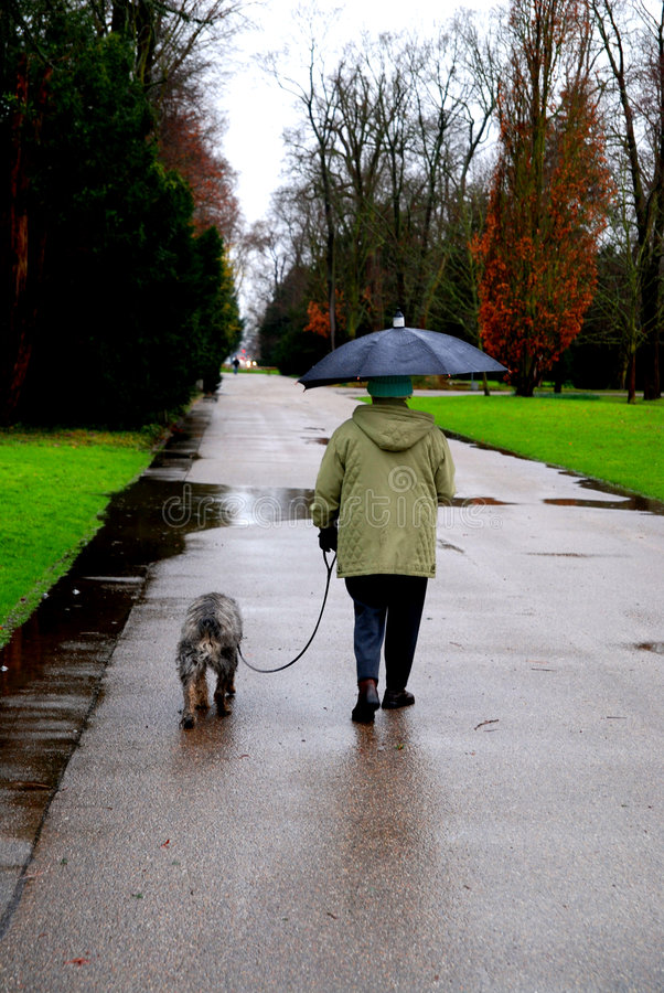 ηλικιωμένη γυναίκα σκυλ&i στοκ εικόνα