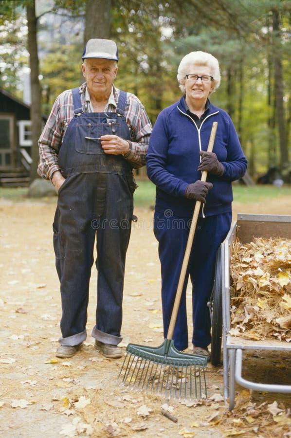 Ηλικιωμένη καλλιέργεια στοκ εικόνα
