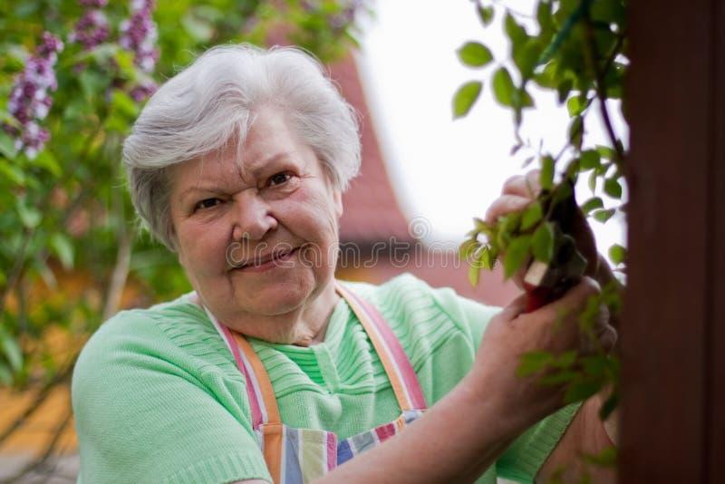 Ηλικιωμένη κυρία στον κήπο στοκ εικόνα με δικαίωμα ελεύθερης χρήσης
