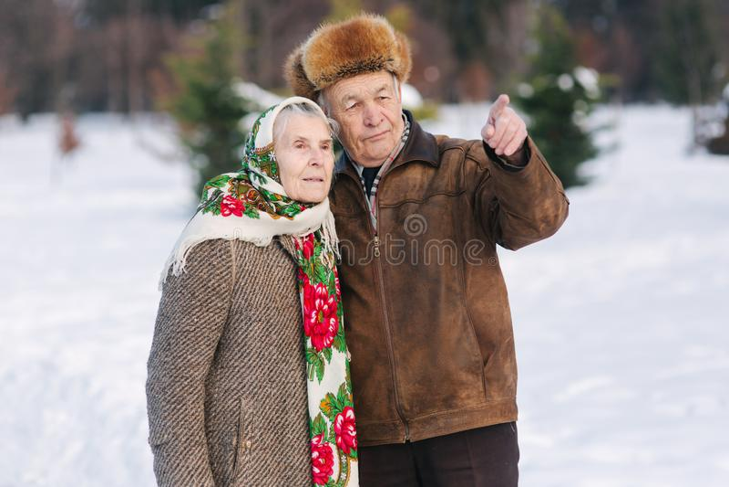Ηλικιωμένη χαλάρωση ζευγών στο χειμώνα στο πάρκο Ευτυχείς παππούς και γιαγιά που περπατούν από κοινού στοκ εικόνες