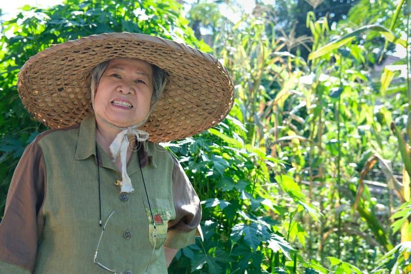 ηλικιωμένος αγρότης κηπουρών ηλικιωμένων γυναικών ανώτερος που στηρίζεται στον κήπο στοκ εικόνες