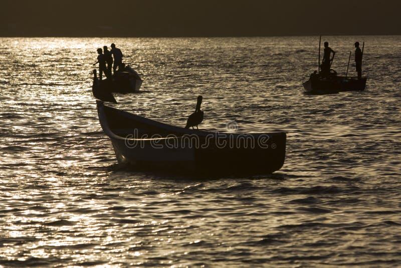 ηλιοβασίλεμα αλιείας στοκ εικόνες με δικαίωμα ελεύθερης χρήσης