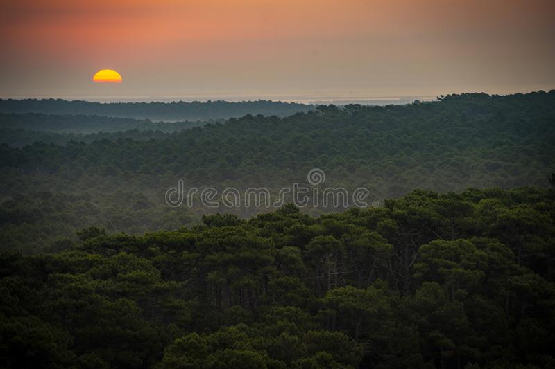 Ηλιοβασίλεμα, δάσος από τον αμμόλοφο du Pilat, ο μεγαλύτερος αμμόλοφος άμμου στην Ευρώπη, Γαλλία στοκ εικόνες