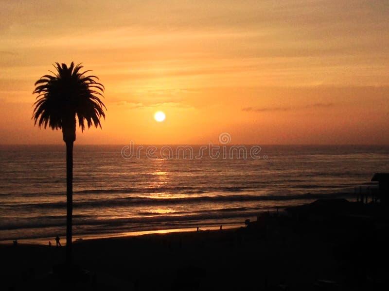 Ηλιοβασίλεμα Ειρηνικών Ωκεανών παραλιών φοινίκων στοκ φωτογραφία