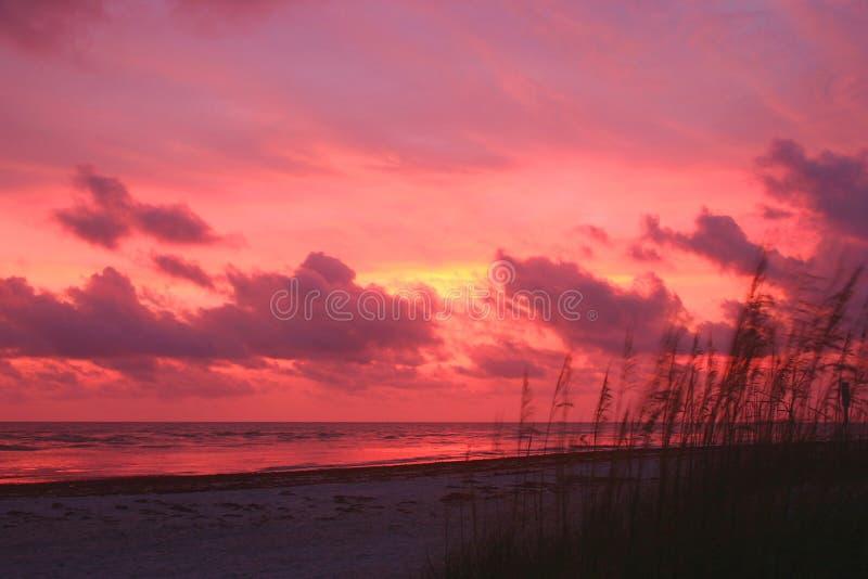 ηλιοβασίλεμα ζωηρό στοκ εικόνες με δικαίωμα ελεύθερης χρήσης