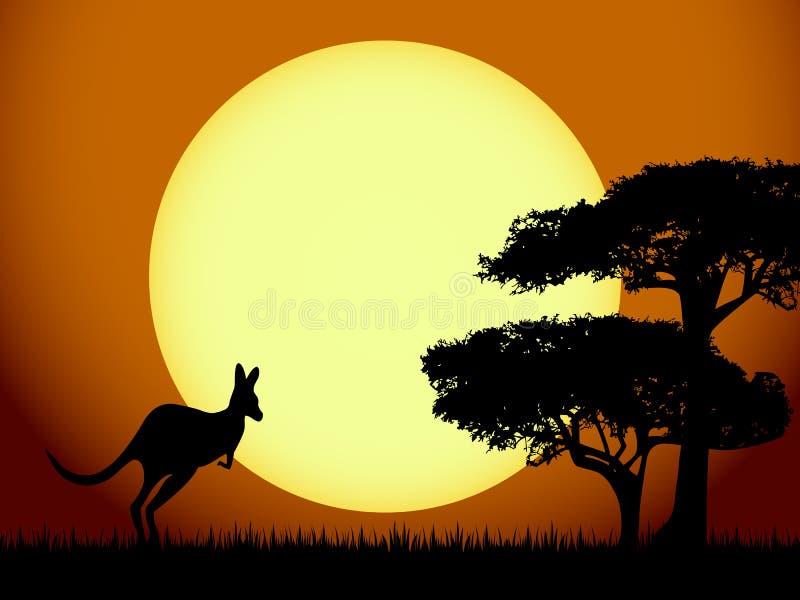 ηλιοβασίλεμα καγκουρό διανυσματική απεικόνιση