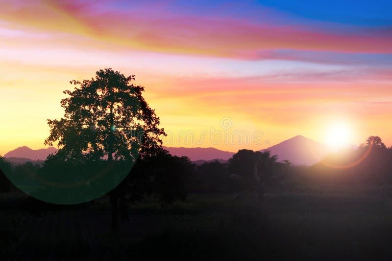 Ηλιοβασίλεμα και ελαφρύς δίκαιος ήλιος ζωηρόχρωμο σε όμορφο ουρανού και σύννεφων με το δέντρο σκιαγραφιών στη δασώδη περιοχή στοκ εικόνες με δικαίωμα ελεύθερης χρήσης