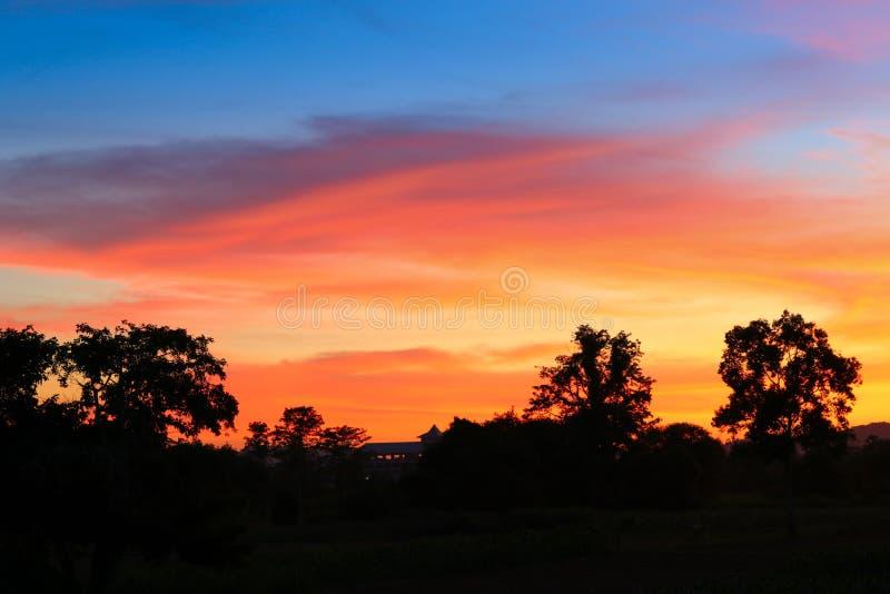 Ηλιοβασίλεμα και ελαφρύς δίκαιος ήλιος ζωηρόχρωμο σε όμορφο ουρανού και σύννεφων με το δέντρο σκιαγραφιών στη δασώδη περιοχή στοκ φωτογραφία