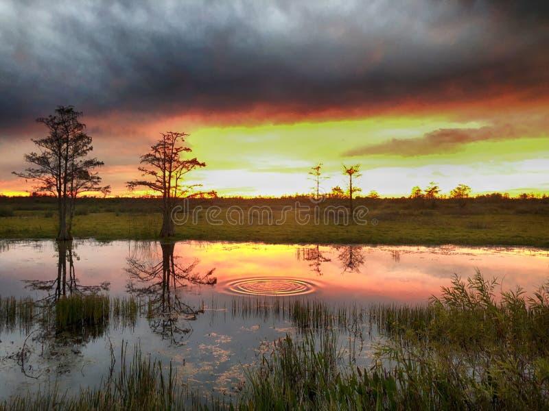 ηλιοβασίλεμα και κυματισμοί ελών στο νερό στοκ φωτογραφία
