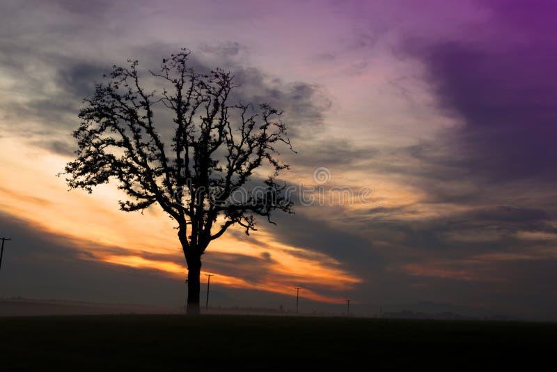 Ηλιοβασίλεμα κοιλάδων Willamette στοκ φωτογραφίες