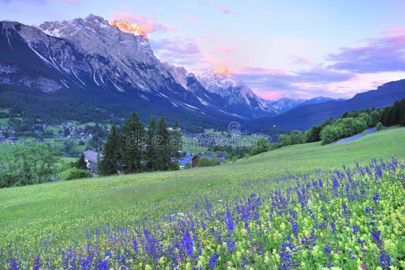 ηλιοβασίλεμα λουλου στοκ φωτογραφία με δικαίωμα ελεύθερης χρήσης