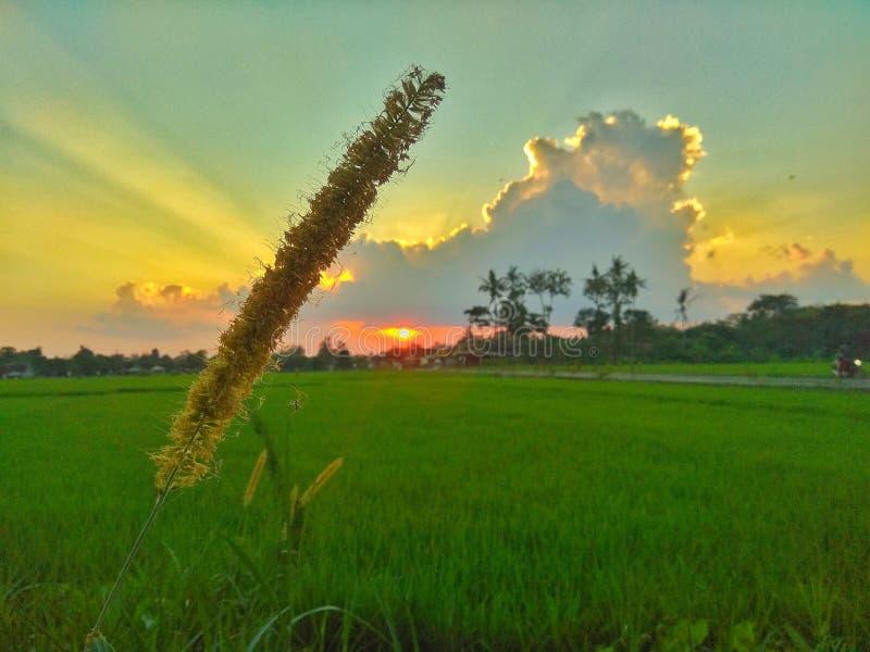 Ηλιοβασίλεμα μέσα πίσω από το σύννεφο στοκ εικόνες
