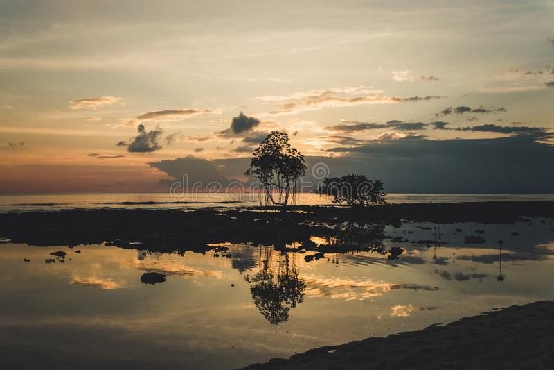 Ηλιοβασίλεμα μαγγροβίων, που λαμβάνεται στο νησί του Neil, νησιά Andaman, Ινδία στοκ εικόνα με δικαίωμα ελεύθερης χρήσης