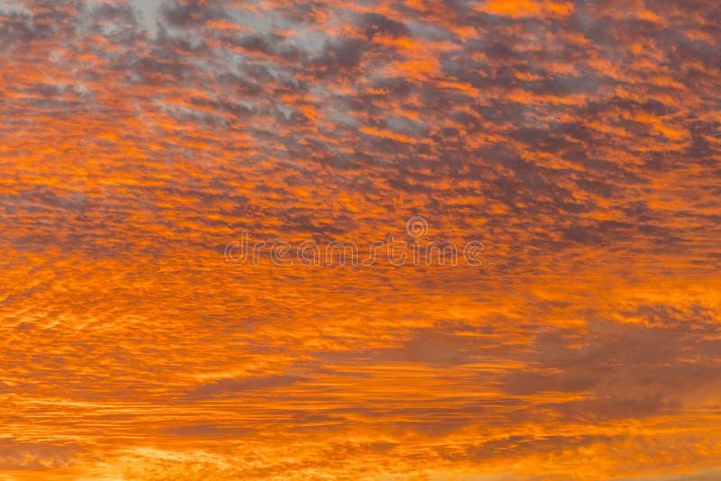 Ηλιοβασίλεμα με τον πορτοκαλή ουρανό Καυτός φωτεινός δονούμενος πορτοκαλής και κίτρινος ουρανός ηλιοβασιλέματος χρωμάτων clouds s στοκ εικόνες