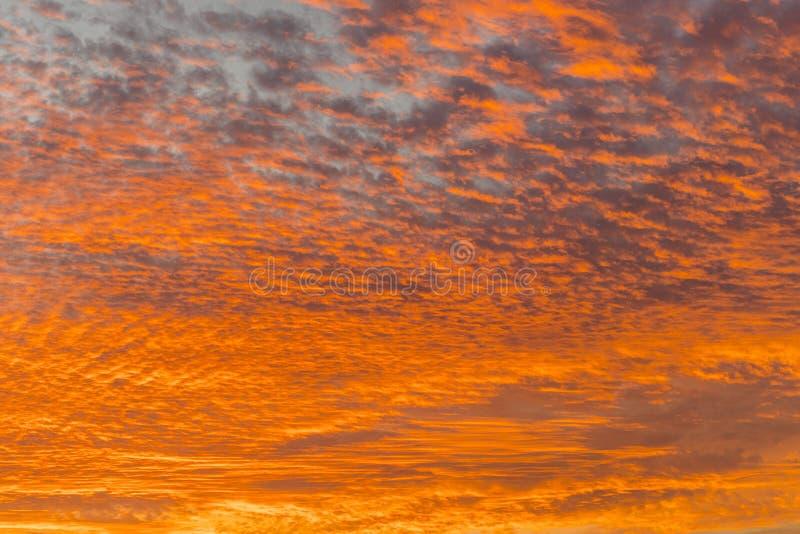 Ηλιοβασίλεμα με τον πορτοκαλή ουρανό Καυτός φωτεινός δονούμενος πορτοκαλής και κίτρινος ουρανός ηλιοβασιλέματος χρωμάτων clouds s στοκ εικόνες με δικαίωμα ελεύθερης χρήσης