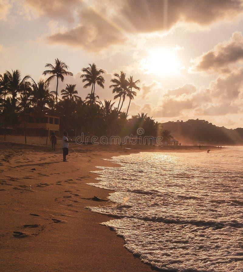 Ηλιοβασίλεμα με τους φοίνικες στην παραλία Sayulita στοκ φωτογραφία με δικαίωμα ελεύθερης χρήσης