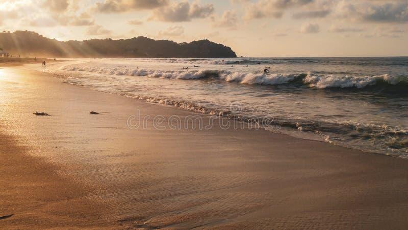 Ηλιοβασίλεμα με τους φοίνικες στην παραλία Sayulita στοκ εικόνα